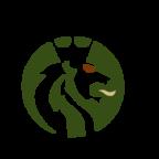 Fußballverband Logo